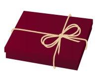Красная коробка подарка иллюстрация штока