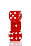 Красная кость Стоковое Фото