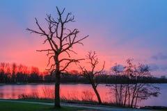 Красная красная вода Стоковая Фотография RF