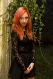 Красная красота Стоковая Фотография RF