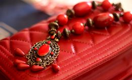 Красная красотка Стоковые Изображения