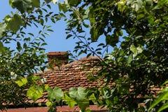 Красная крыша в листве стоковые изображения