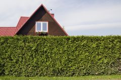 Красная крыша стандартного сельского частного деревянного небольшого дома и h Стоковые Изображения