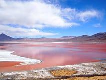 Красная лагуна, Laguna Colorada Стоковое Изображение