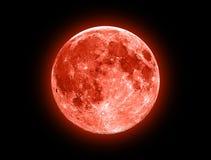 Красная луна стоковое изображение