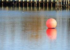 Красная морская отметка шарика с отражением и моль в предпосылке Стоковое Фото