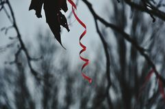 Красная нашивка Стоковое Изображение RF