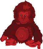 Красная обезьяна иллюстрация штока