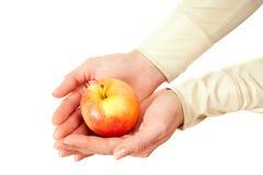 Красная ложь яблока в женских руках Стоковые Фото
