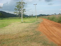 Красная дорога через зеленые поле и гору Стоковые Изображения RF