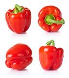 Красная паприка Стоковые Фото