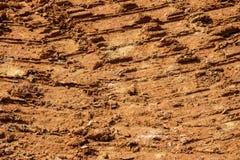 красная почва Стоковая Фотография