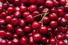 Красная предпосылка вишен стоковое изображение rf