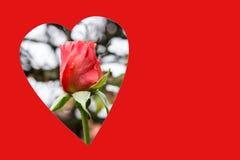 Красная предпосылка валентинки с космосом экземпляра Стоковое фото RF