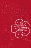 Красная предпосылка с цветком Стоковые Фотографии RF