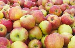 Красная предпосылка яблок Стоковое Изображение RF