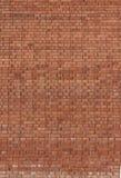 Красная предпосылка brickwall Стоковое Изображение RF