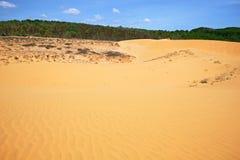 Красная пустыня Стоковые Фотографии RF