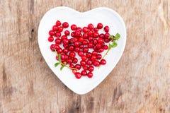 Красная древесина плиты сердца клюкв леса Стоковое Изображение