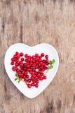 Красная древесина плиты сердца клюкв леса Стоковое Изображение RF