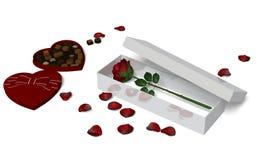 Красная роза в коробке Стоковые Фотографии RF