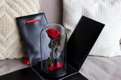 Красная роза в черном ящике как подарок, прочная подняла в склянку сохранено стоковые фотографии rf