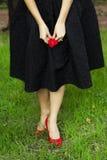 Красная роза и высокая пятка Стоковые Изображения