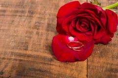 Красная роза и лепесток с кольцами Стоковая Фотография RF