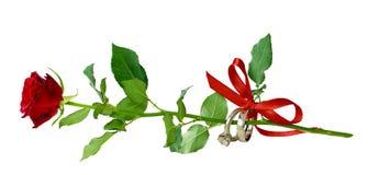 Красная роза и 2 золотых кольца связанных с silk лентой обхватывают Стоковые Изображения RF
