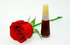 Красная роза и маникюр стоковое изображение