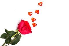 Красная роза на белой предпосылке и случайно разбросанном красном gl Стоковое Фото