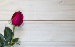 Красная роза на деревянной предпосылке на день валентинки стоковые изображения