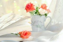 Красная роза на предпосылке светлого тонового изображения стоковая фотография