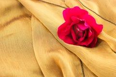 Красная роза на ткани сбор винограда типа лилии иллюстрации красный Стоковые Фото