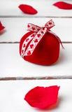 Красная роза дня валентинки Стоковое Фото