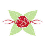 Красная роза с листьями терния и зеленого цвета Стоковая Фотография