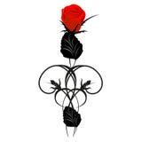 Красная роза с черными элементами дизайна Стоковая Фотография