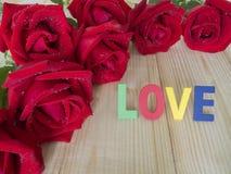 Красная роза 15 Стоковые Фотографии RF