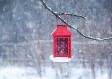 Красная смертная казнь через повешение фонарика на ветви дерева Утро зимы Snowy в парке Стоковое Изображение
