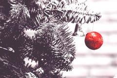 красная смертная казнь через повешение шарика в дереве crismas Стоковые Изображения
