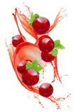 Красная смородина в выплеске сока изолированном на белой предпосылке стоковые изображения
