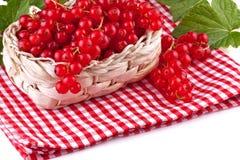 Красная смородина с листьями в корзине Стоковое Фото