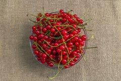 Красная смородина в взгляд сверху шара Стоковая Фотография