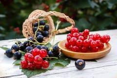 Красная смородина в деревянных плите и черной смородине в корзине на таблице в саде Стоковая Фотография RF