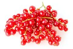 Красная смородина стоковая фотография rf