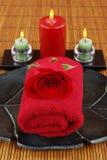 красная спа Стоковое Изображение RF