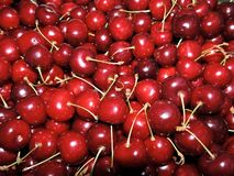 Красная сладостная yummy сочная вишня Стоковое Фото