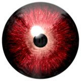Красная текстура глаза изолированная на белой предпосылке стоковые изображения rf
