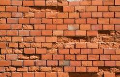 Красная текстура кирпичной стены Стоковые Изображения