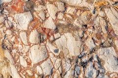 Красная текстура текстуры камня моря Стоковое фото RF